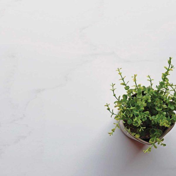 Staron solid surface Cotton White